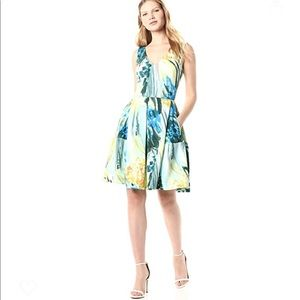Taylor Dress 4 Fit & Flare Paint Print Sleeveless